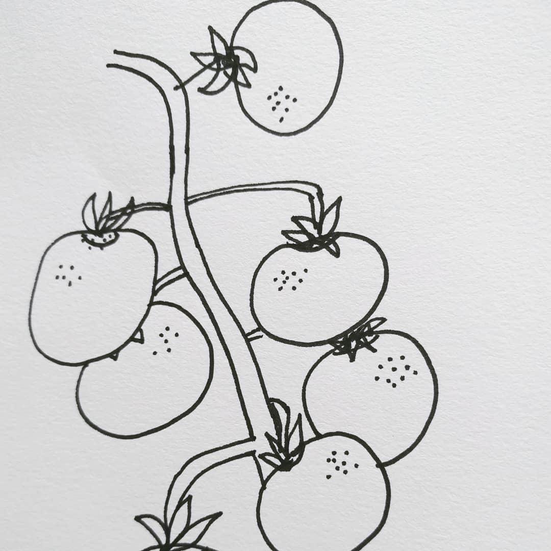 Some recent drawings! spring drawyourvegetables illustration makersgonnamake
