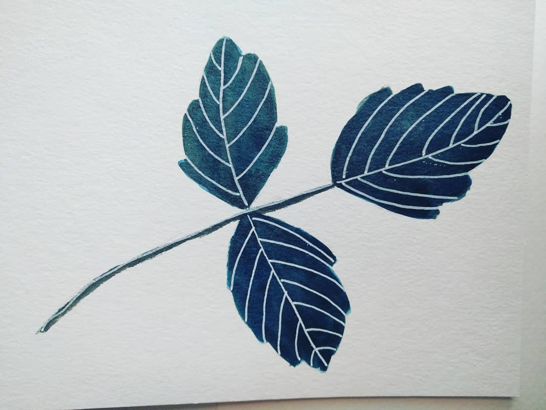 Poison ivy, prompt 1of inktober